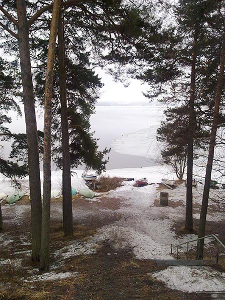 初春 フィンランドの森から
