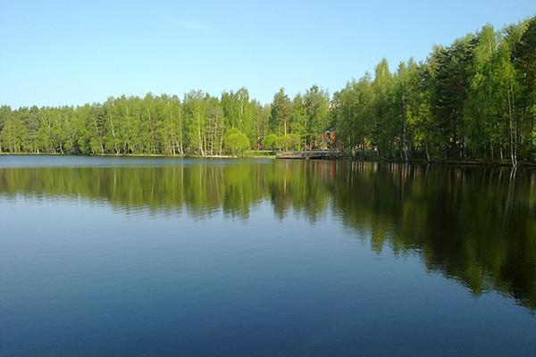 フィンランドの5月の湖畔 フィンランドの森から